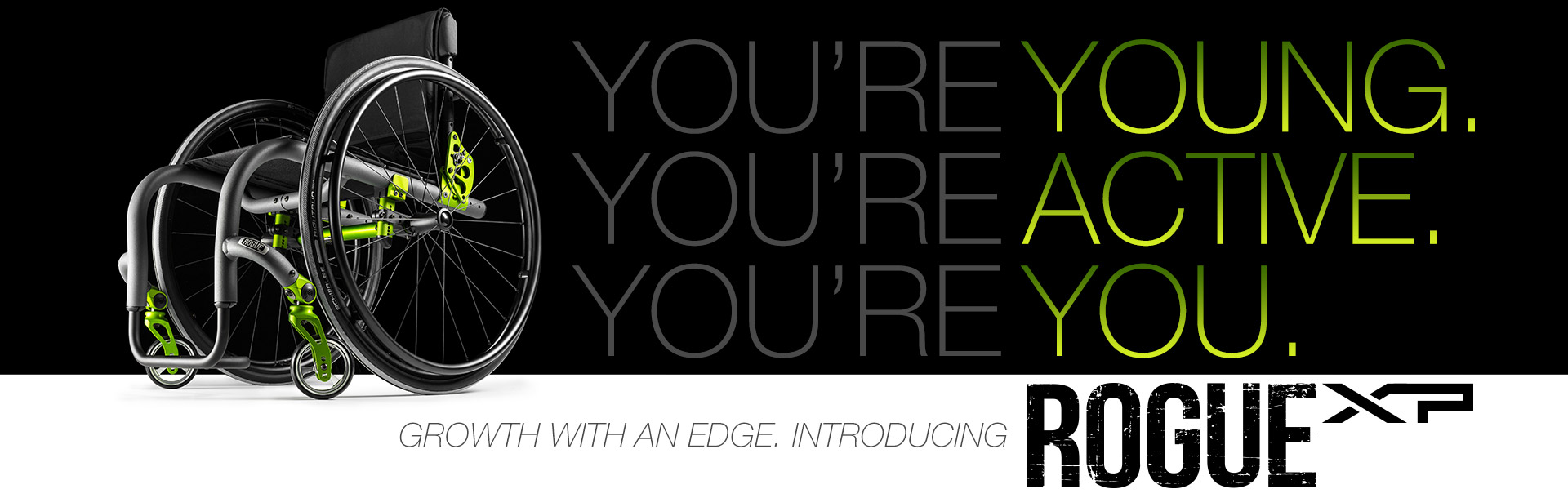 Introducing Rogue XP. Growth with an Edge.